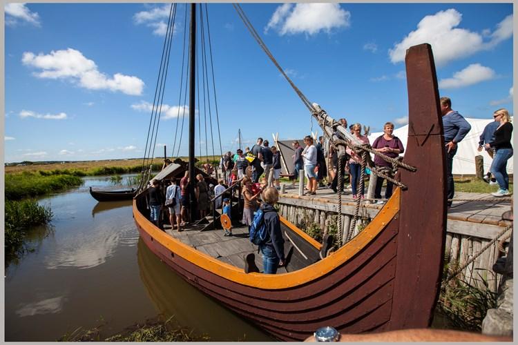 Bork Vikingehavn - Vælg mellem 559 sommerhuse - Feline Holidays